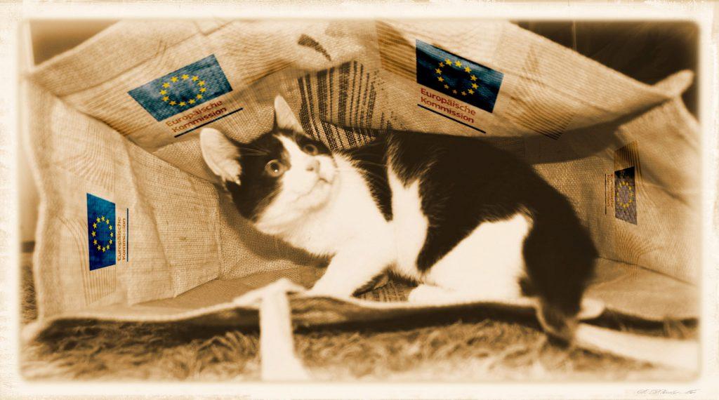 """Bild: CC-0, PublicDomain. Quelle des Originals: """"http://www.publicdomainpictures.net/view-image.php?image=24977&picture=katze-im-sack"""", Nachbearbeitung: LAgATom PublicDomain"""
